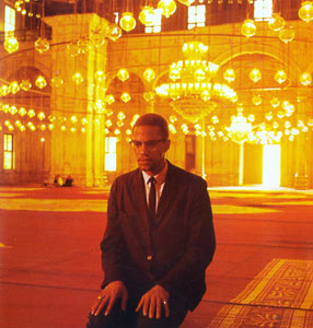 MLK, Malcolm X and Civil Rights Struggle Essay Sample