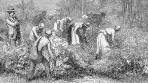 Negocio del esclavismo  a lo largo  de la historia  Maxresdefault-300x169